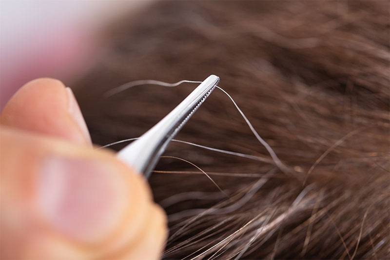 Think Twice Before Plucking Your Gray Hair And Here's Why