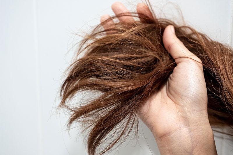 The Hair Follicle Test