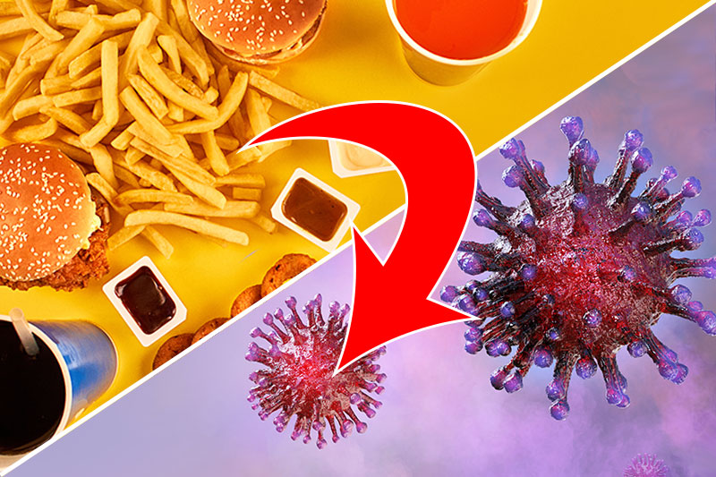 Your Body May Treat Fast Food Like a Dangerous Infection, Mouse Experiment Shows